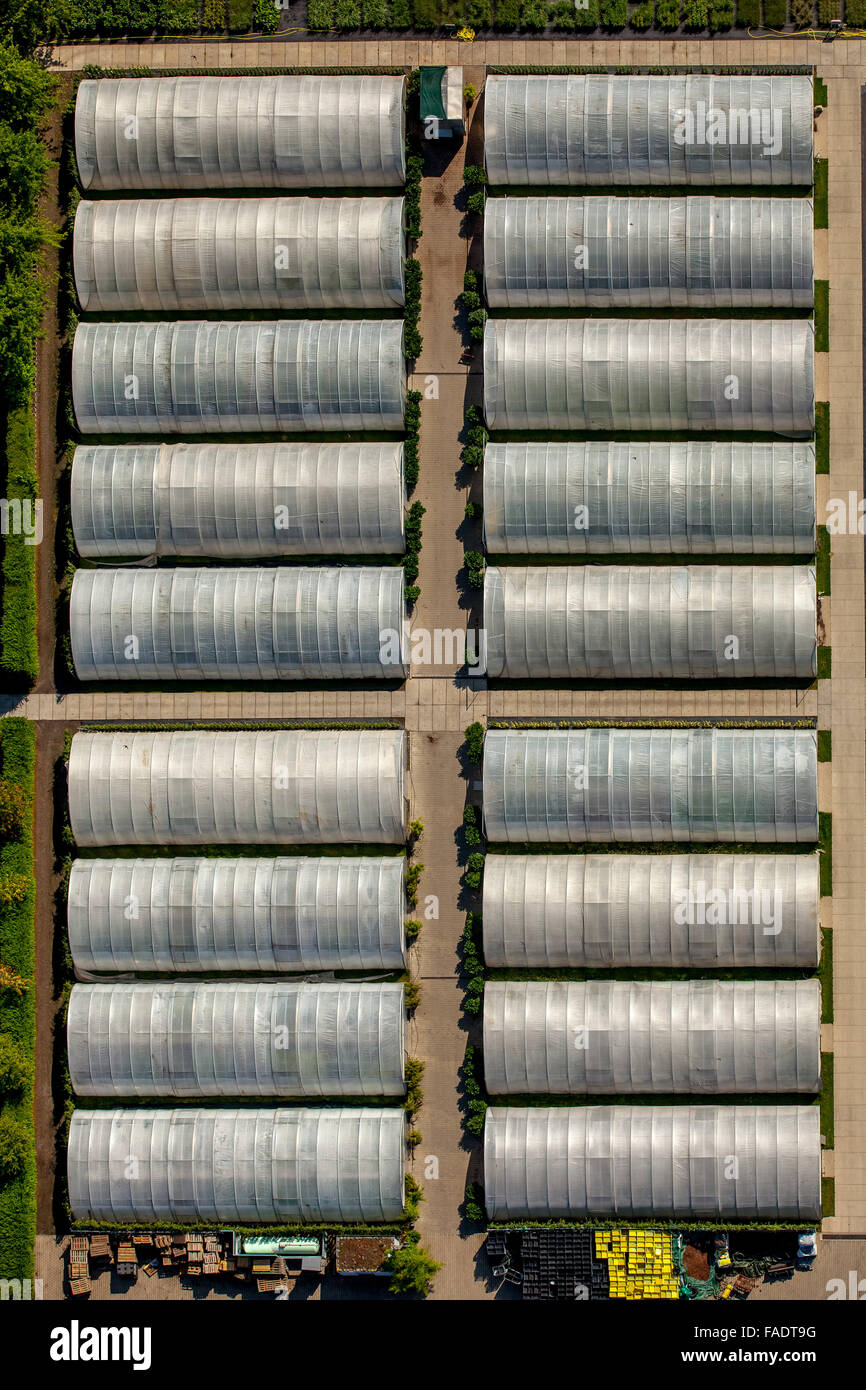 Aerial view, nursery with greenhouses in Angertal Flandersbach, Heiligenhaus, Ruhr region, North rhine westphalia, - Stock Image