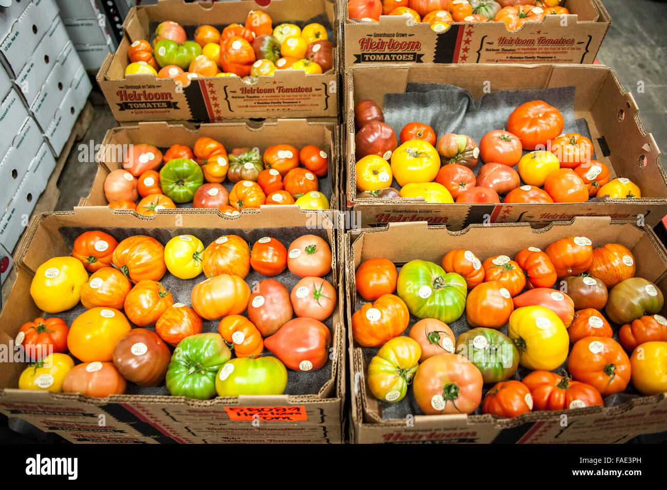 Heirloom Tomatoes Of All Different Sizes And Colors Stock Photo