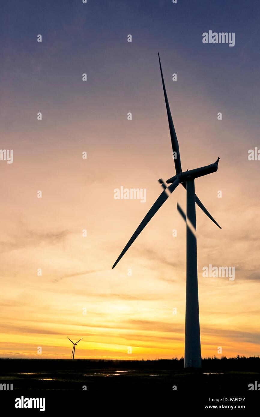 Wind turbine at sunset, Whitelee windfarm, near Glasgow, Scotland, UK - Stock Image