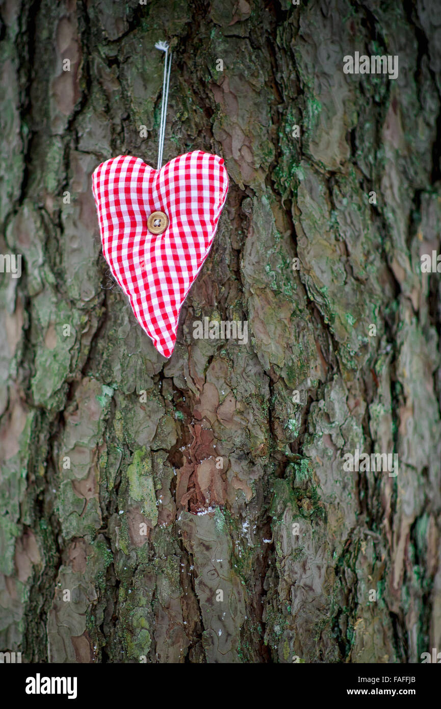 greeting card with handmade valentine heart from textile on the tree trunk - Stock Image