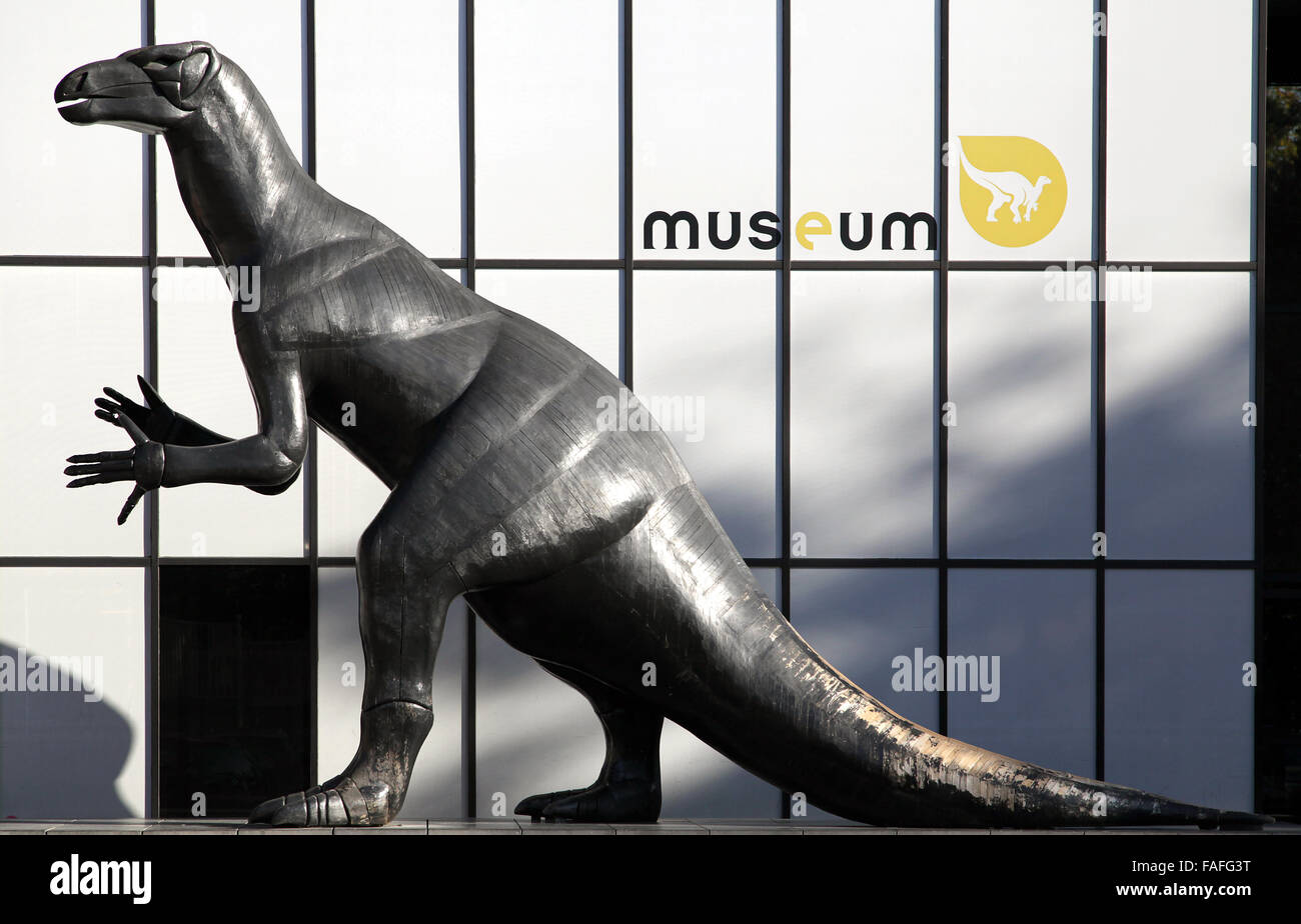 Dinosaur at the Museum of Natural History Brussels - Stock Image