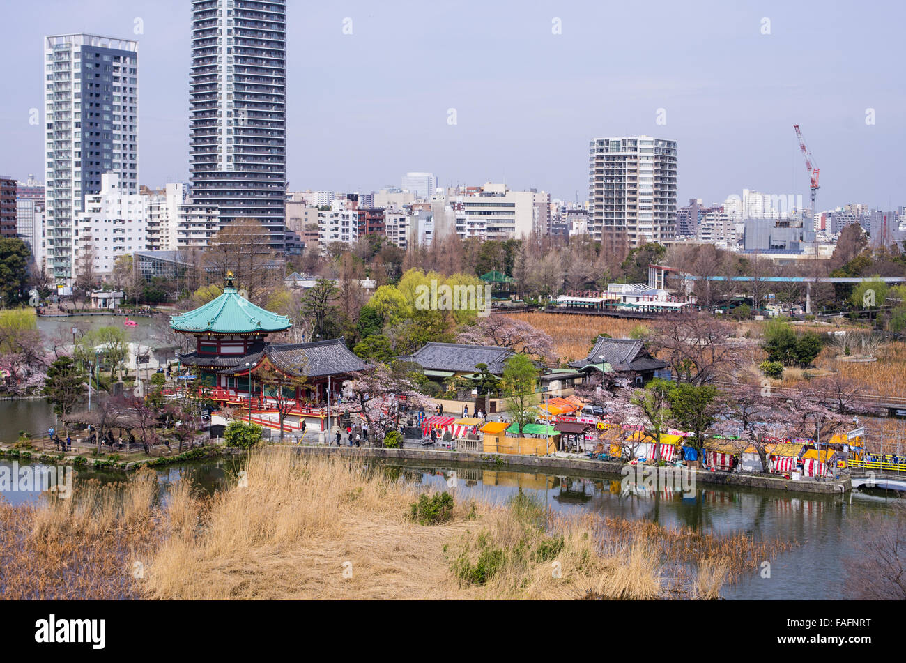 Bentendo with Shinobazu Pond at Ueno Park, Tokyo during cherry blossom season with a small festival on the grounds Stock Photo