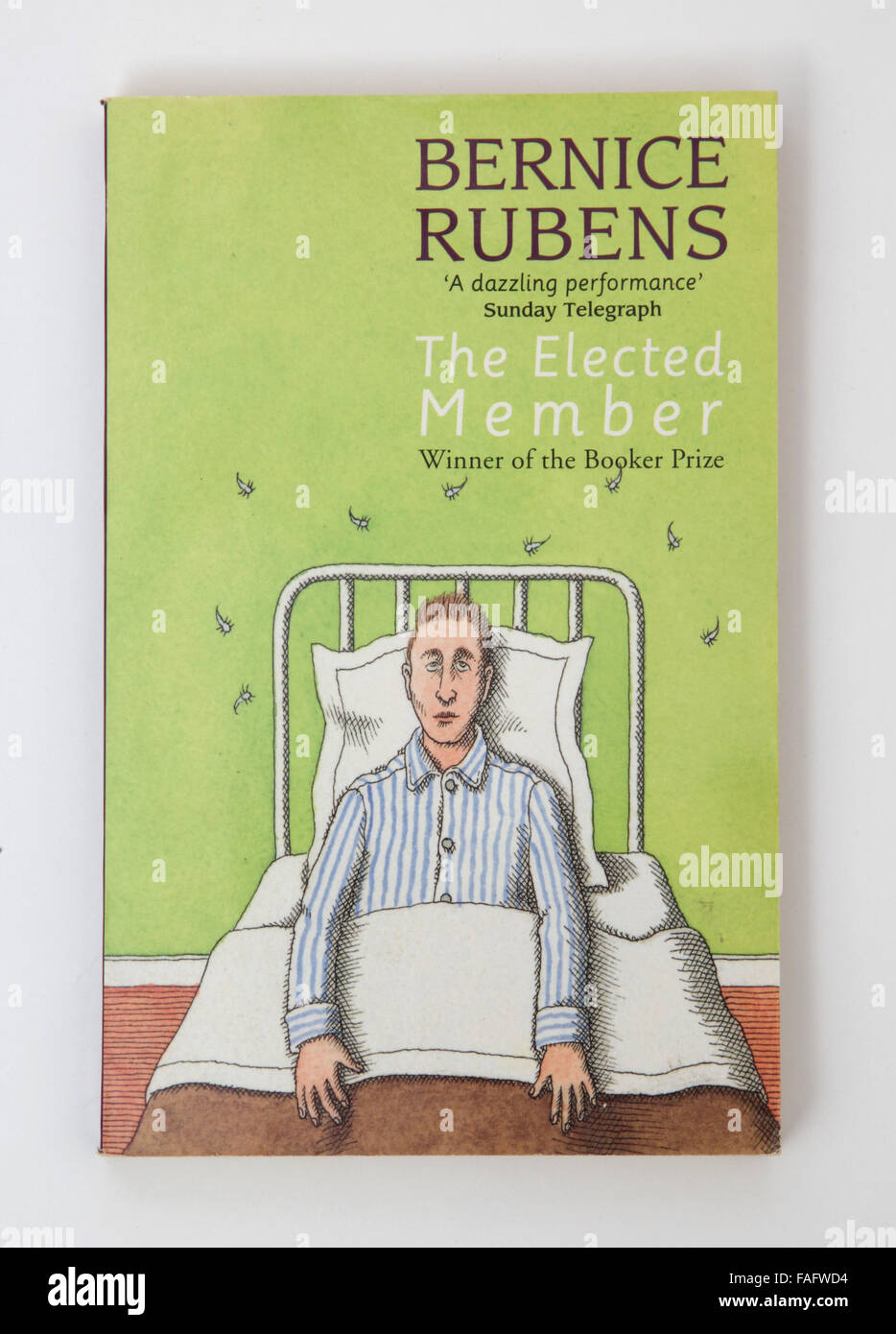 The book - The Elected Member by Bernice Rubens. Winner of The Man Booker Prize - Stock Image