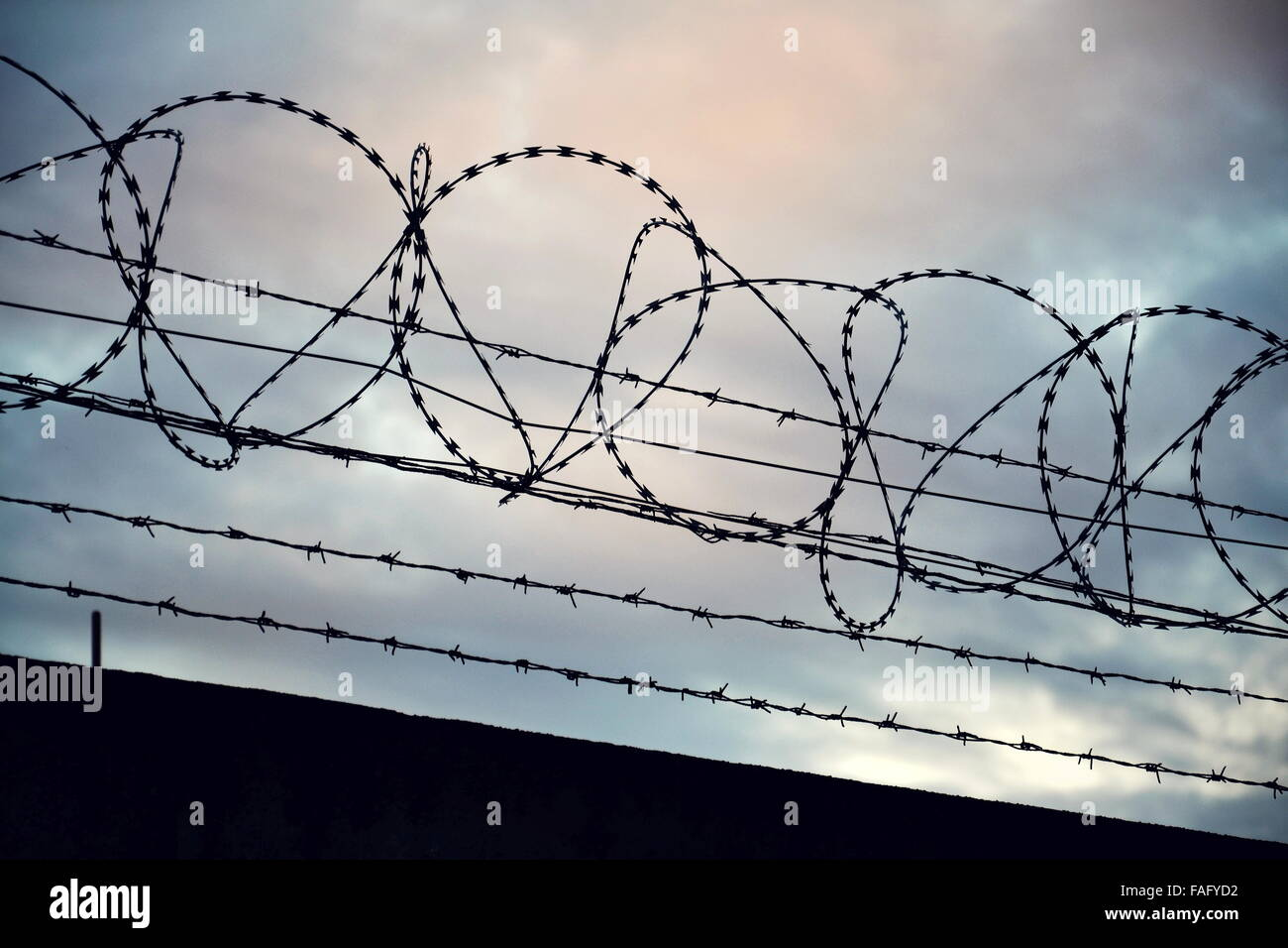 Barbed wire fence stretched around prison walls Stock Photo ...