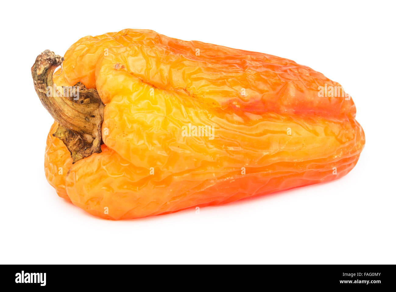 Spoiled yellow bell pepper isolated on white background. - Stock Image