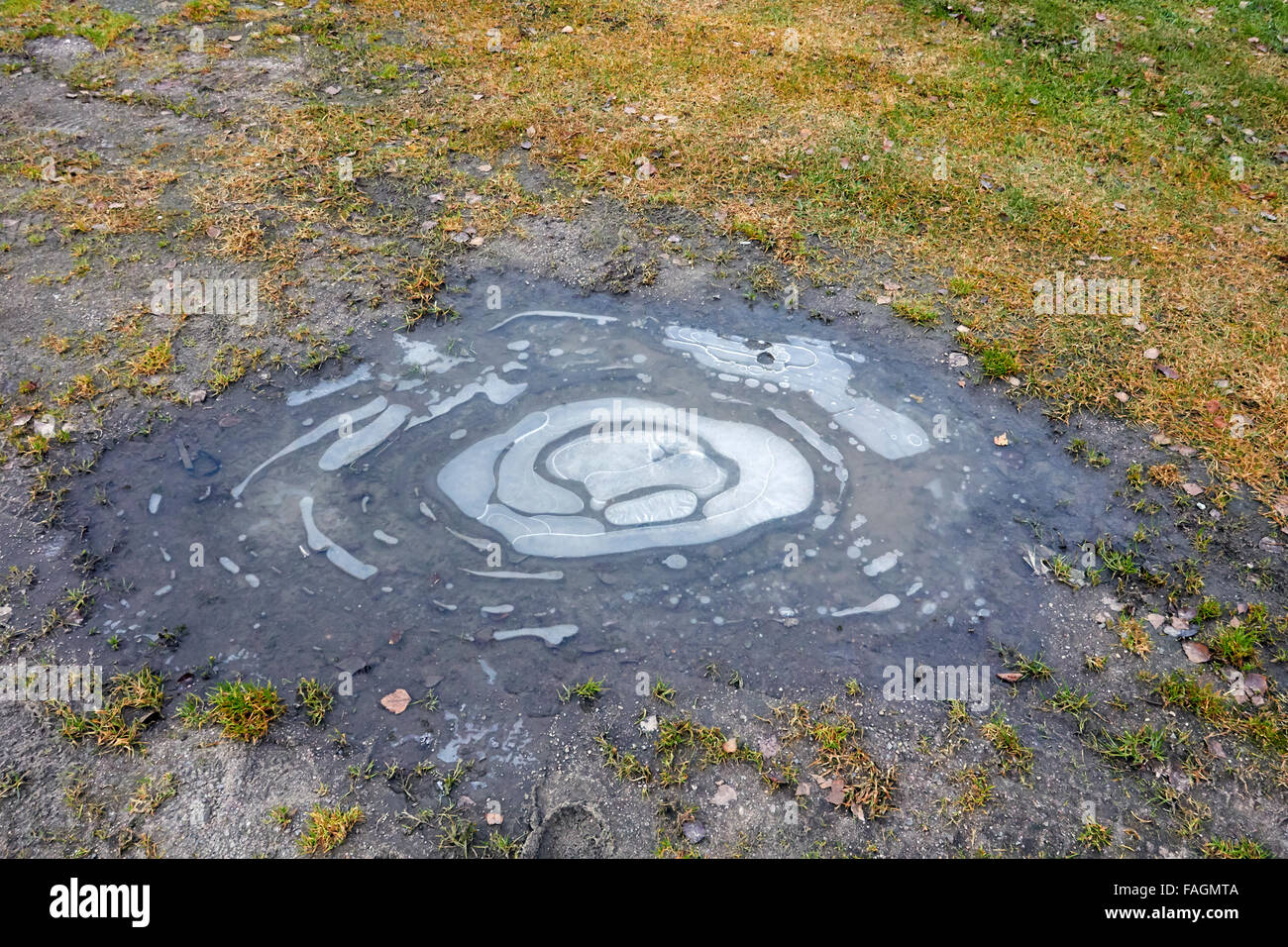frozen puddle on ground - Stock Image