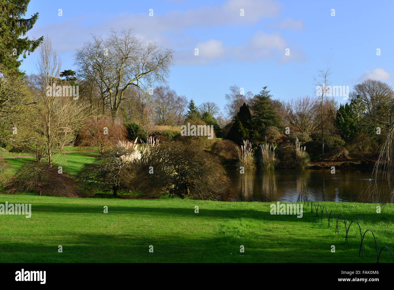 English country garden in winter Stock Photo: 92616054 - Alamy