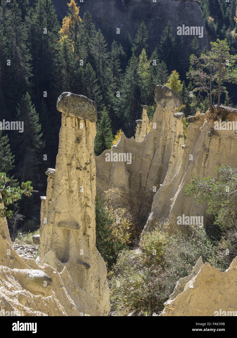 Earth pyramids in Percha, South Tyrol, Italy - Stock Image