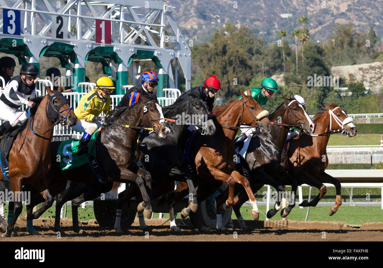 Thoroughbred Horse Races - Stock Image