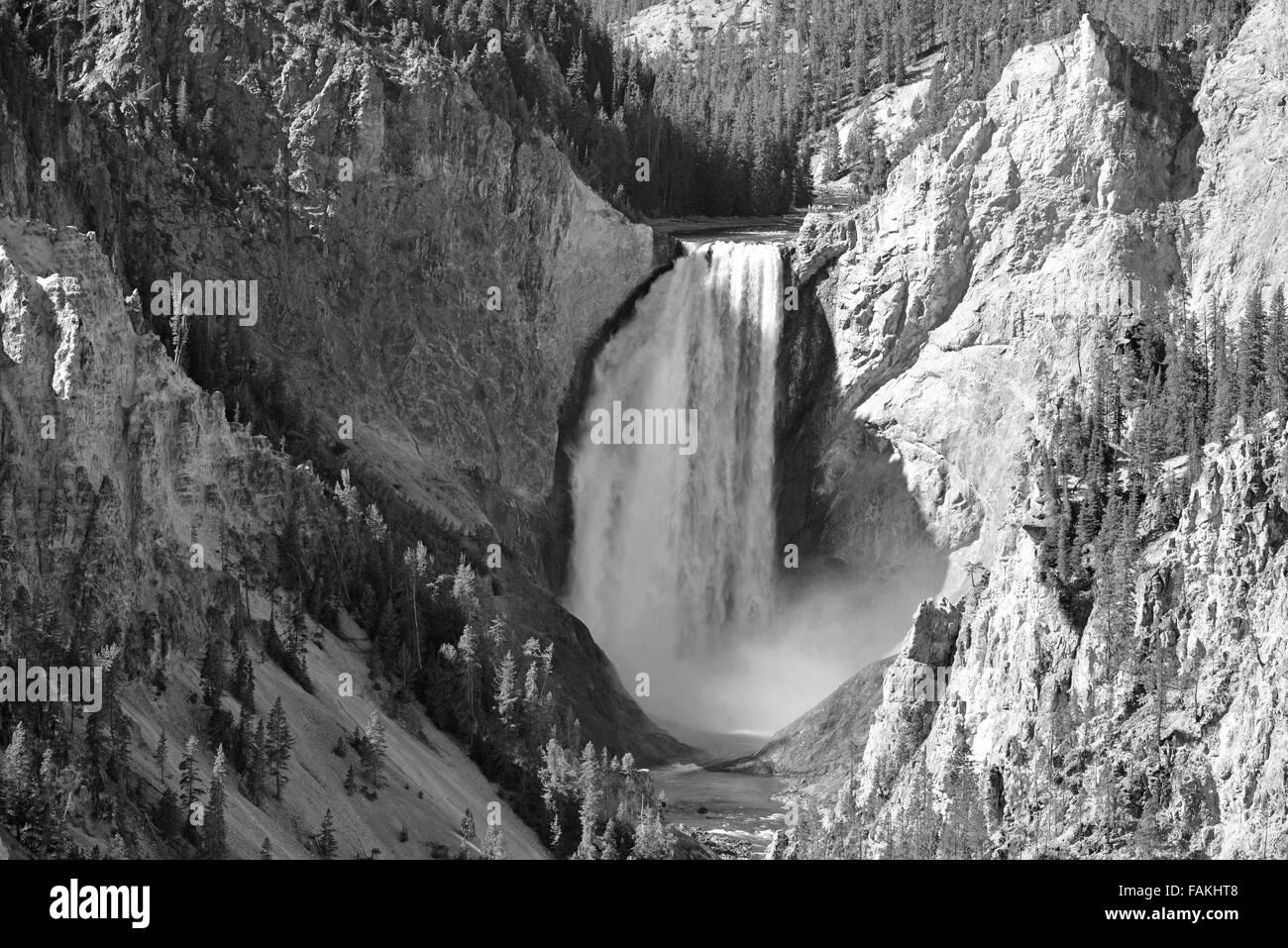 Yellowstone Falls, in Yellowstone National Park, Wyoming, USA - Stock Image