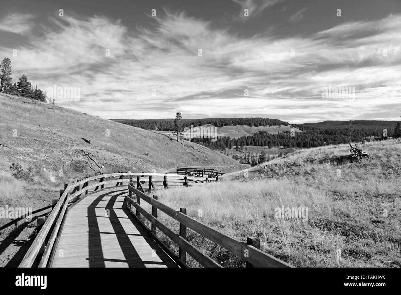 Yellowstone National Park, Wyoming, USA - Stock Image