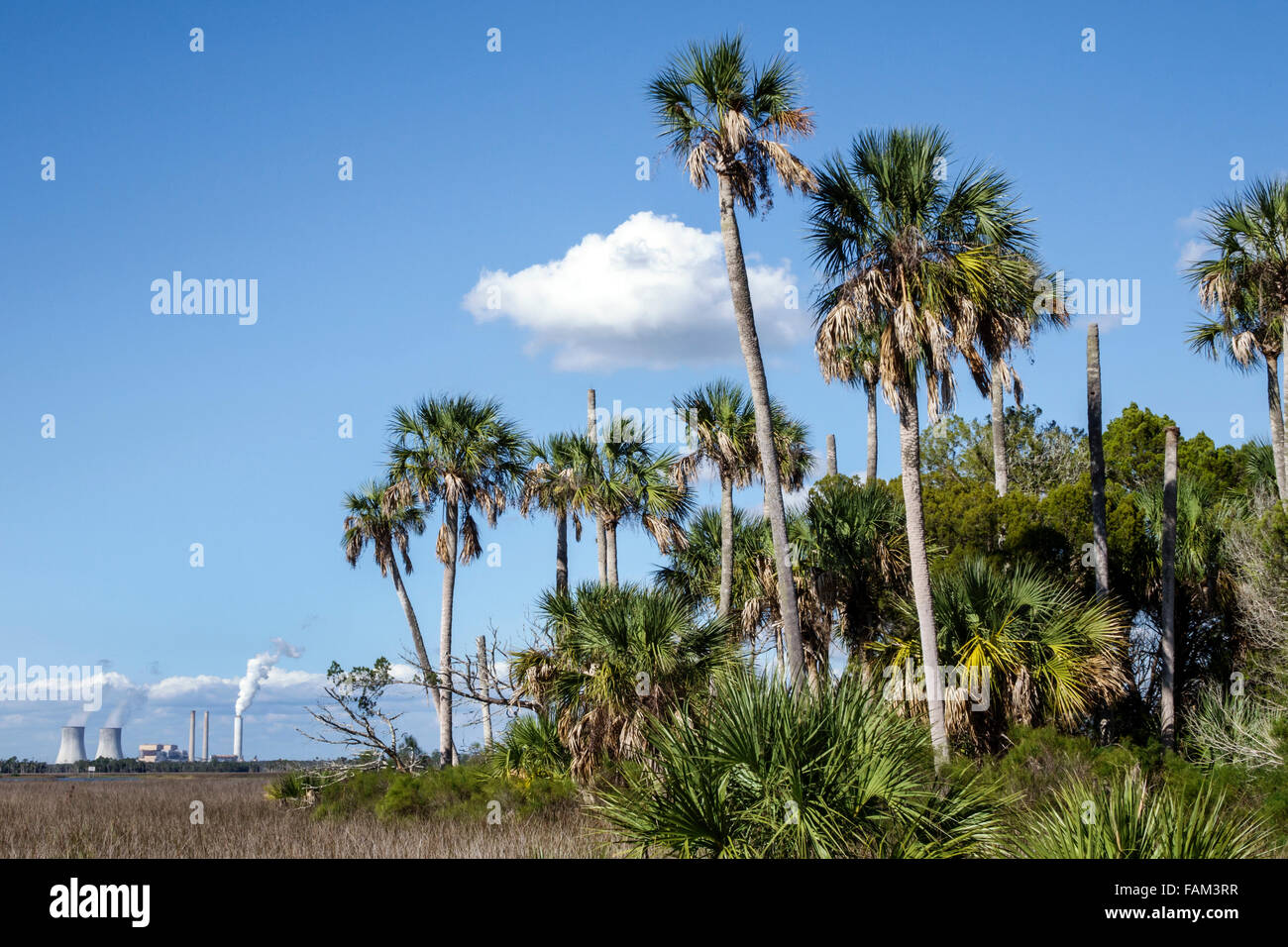 Florida Crystal River Fort Island Duke Energy Crystal River Nuclear Power Plant closed cooling towers decommissioned - Stock Image