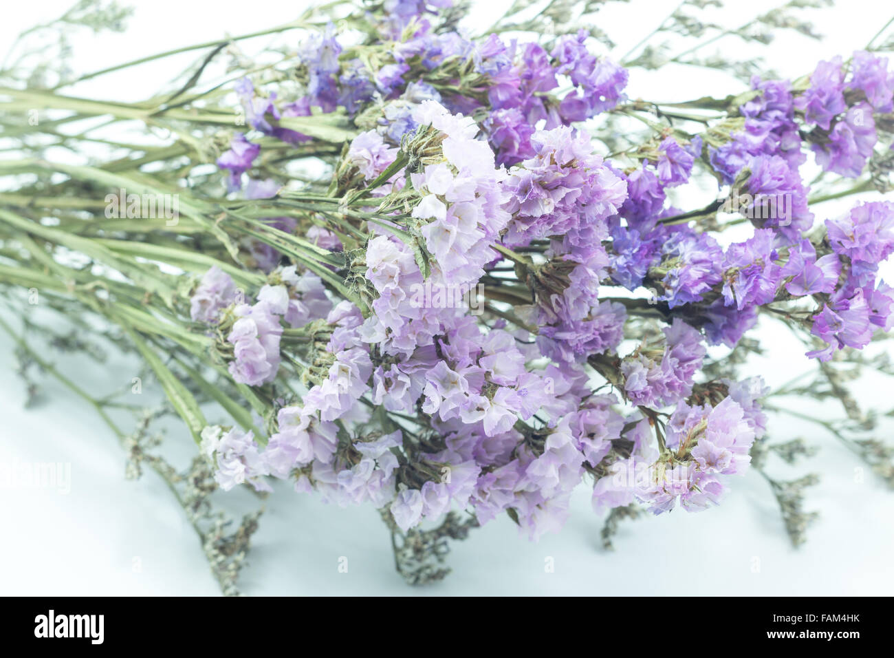 Beautiful Statice Flower Bouquet On White Background Stock Photo