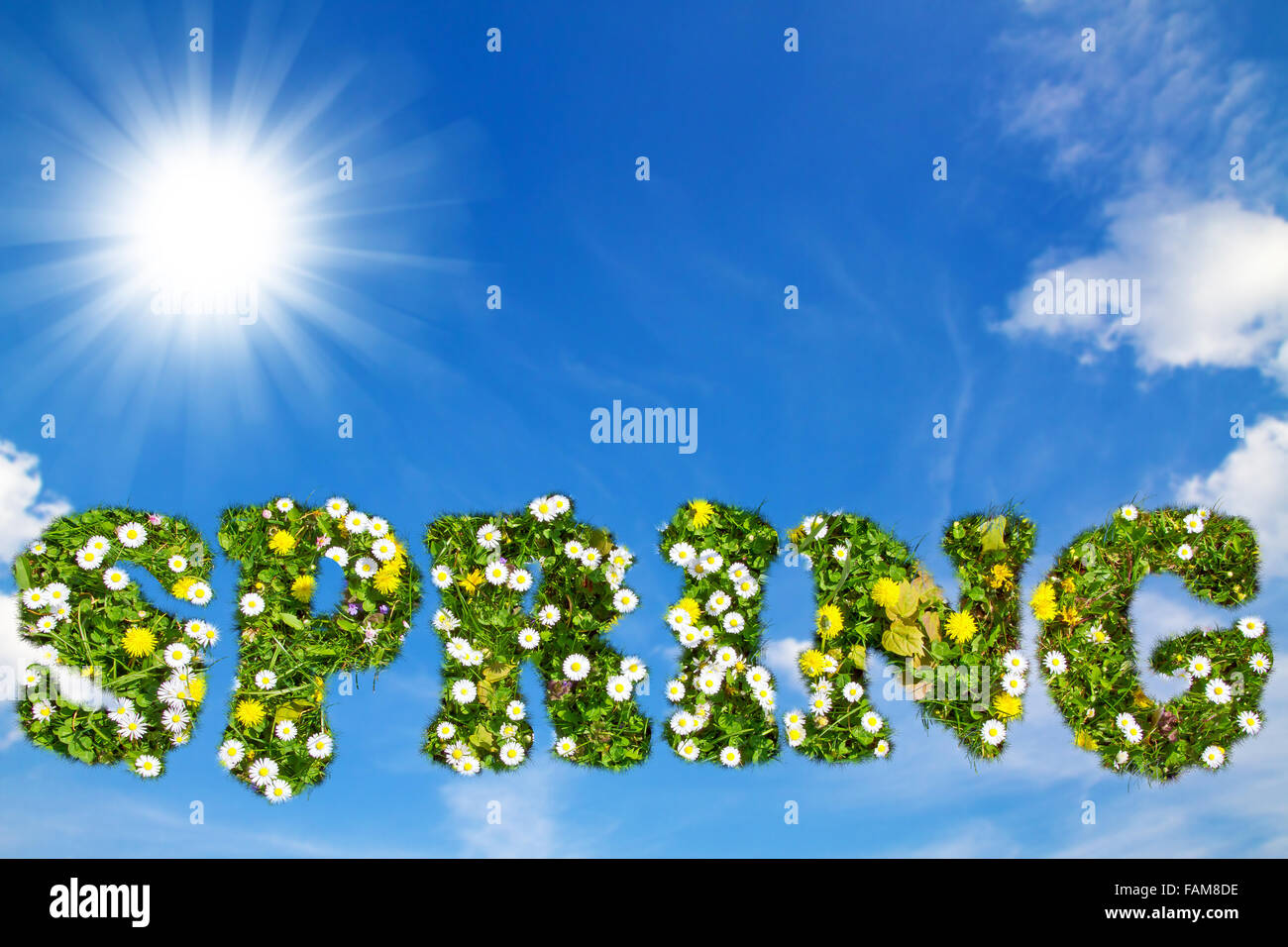 Word spring with flower texture - Stock Image