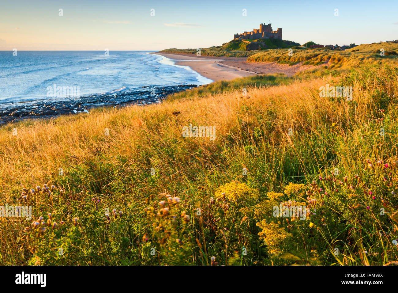 Bamburgh Castle at sunrise on the east cost of Northumberland, England. Stock Photo