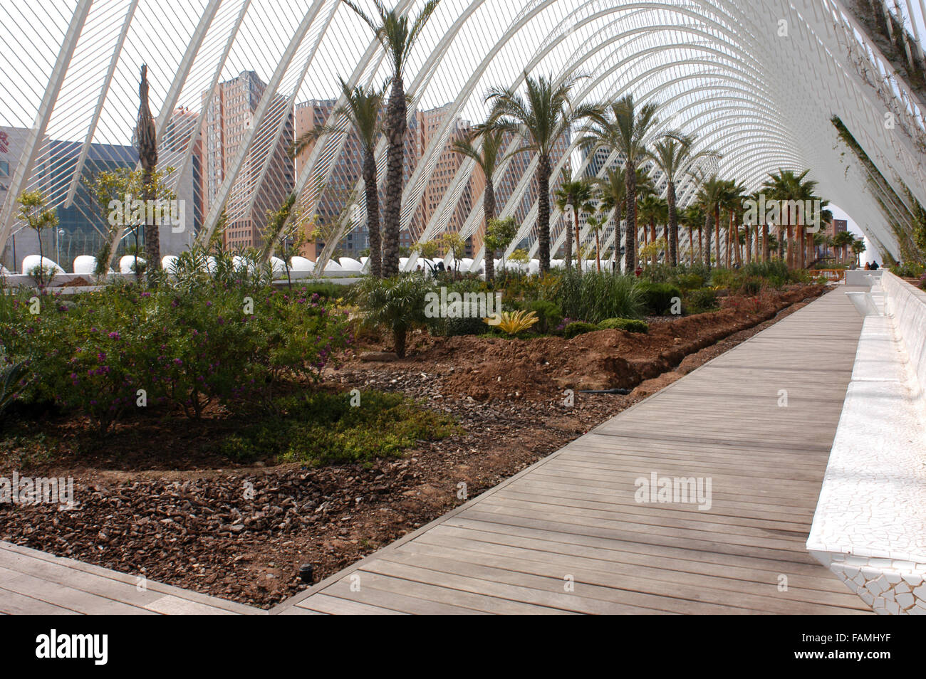 L'Umbracle - a landscaped walk in the City of Arts and Sciences in Valencia, Spain. Stock Photo