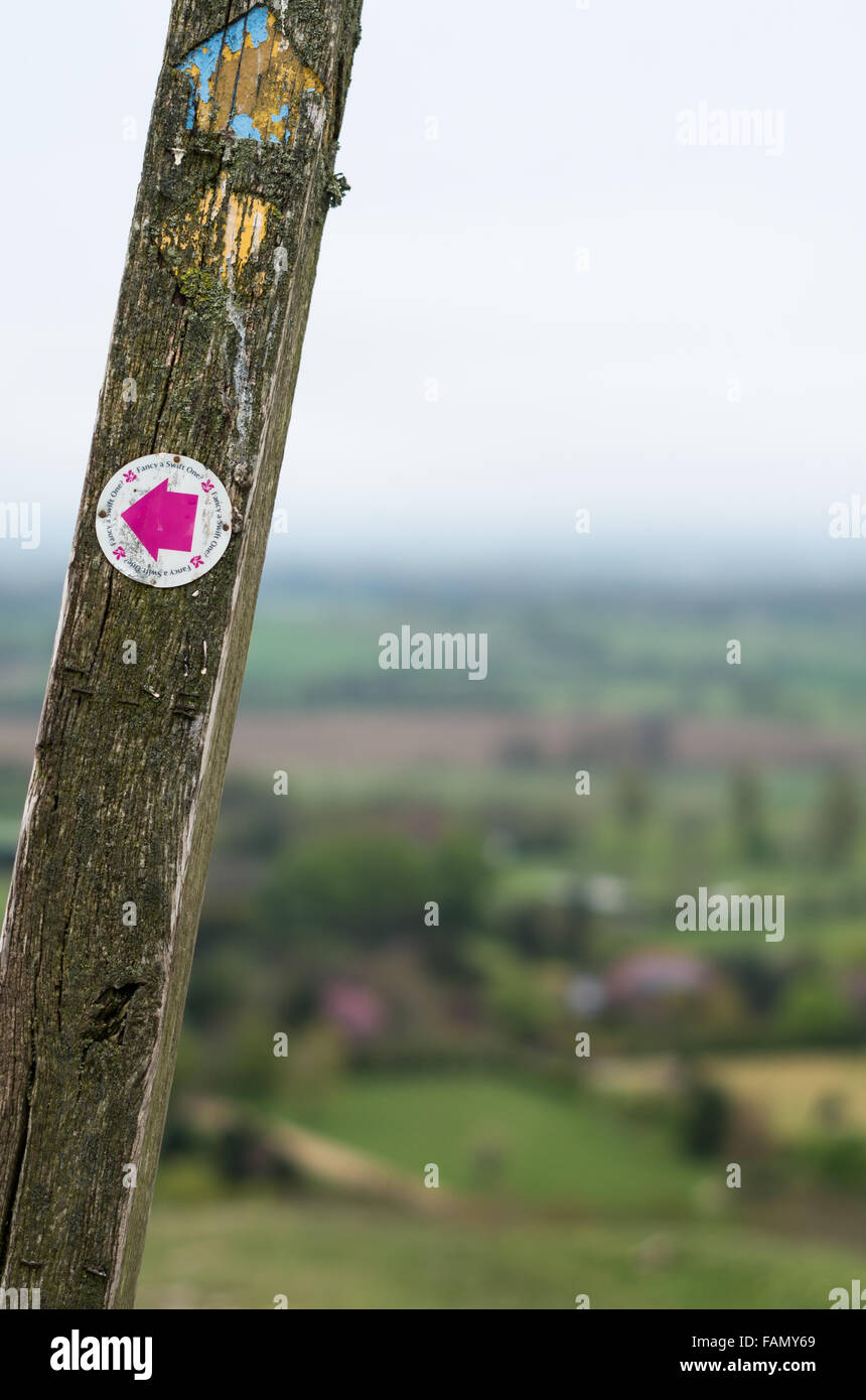 Wooden public footpath sign with hills in West Sussex, England, which includes directions to the nearest pub for - Stock Image