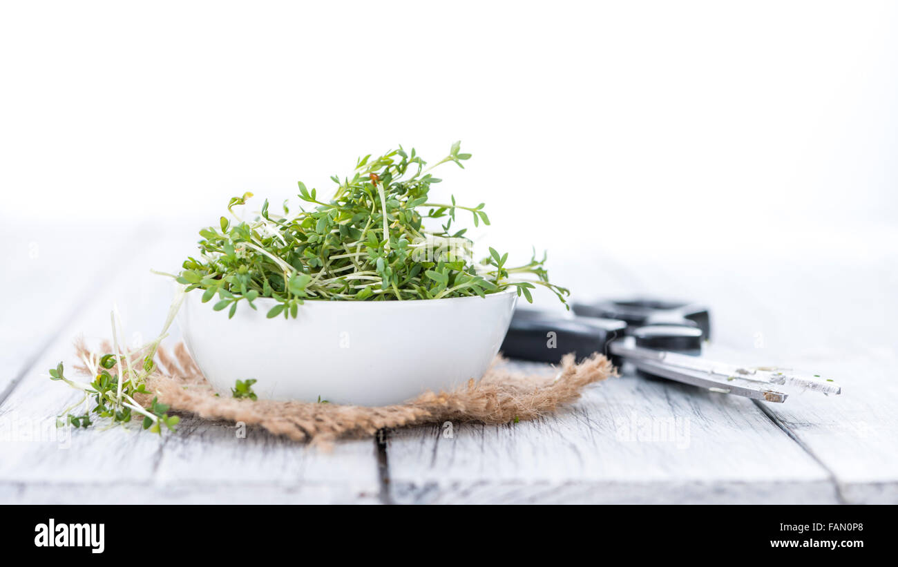 Garden Cress (close-up shot) isolated on white background - Stock Image