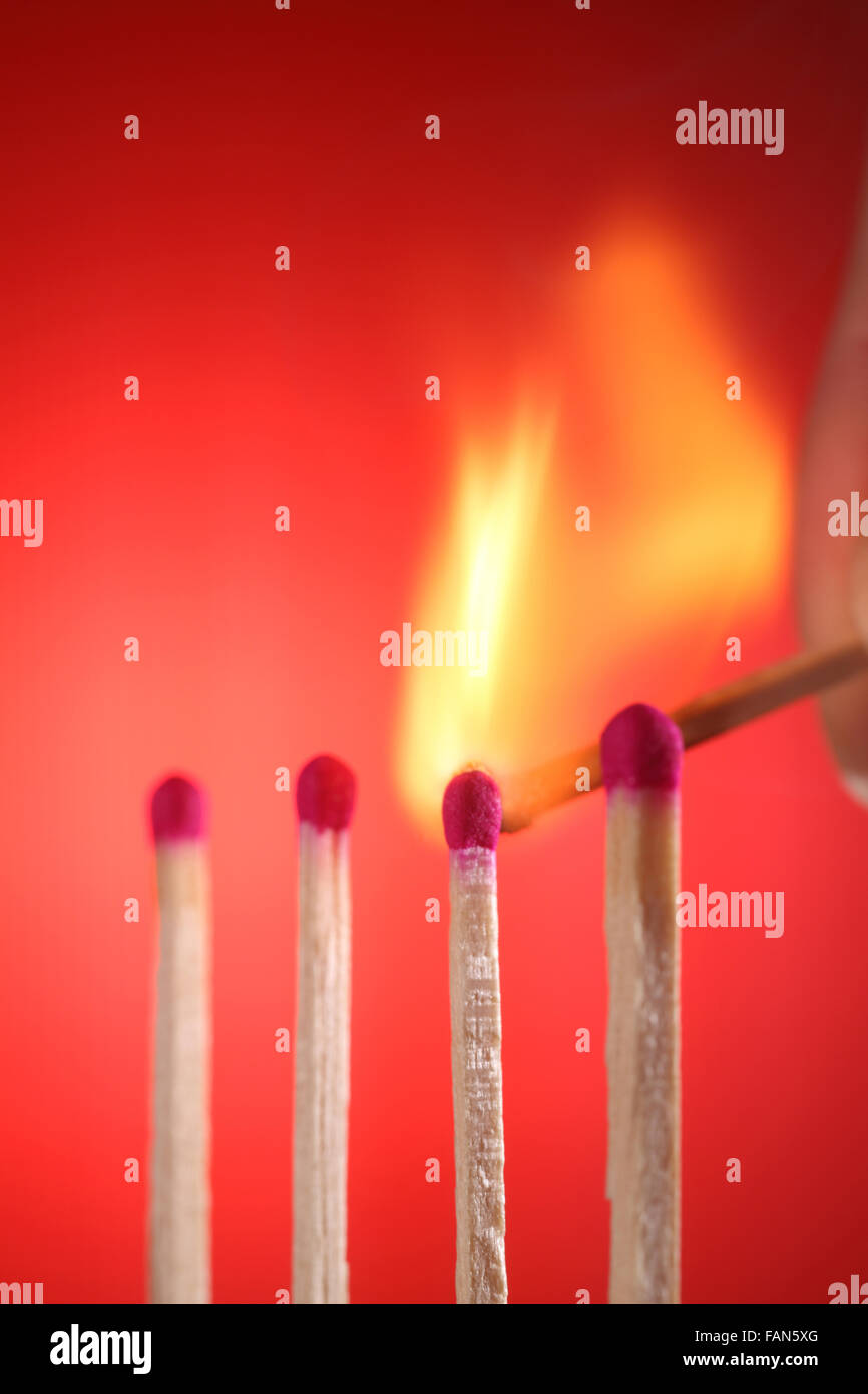 Light match near row of unlit matches - Stock Image