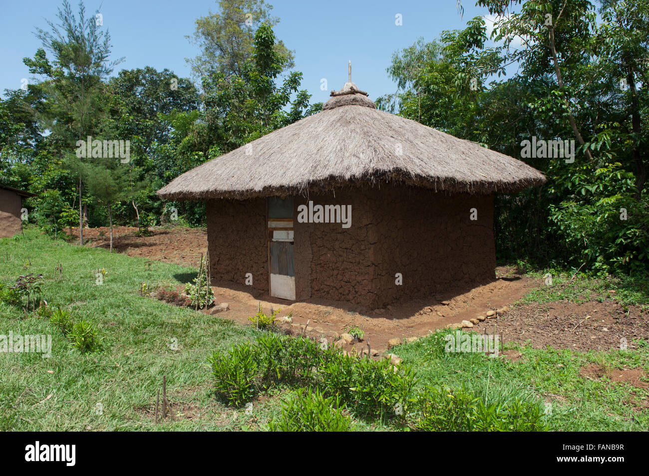 Home made from mud with a thatched roof with a neat garden in rural kenya