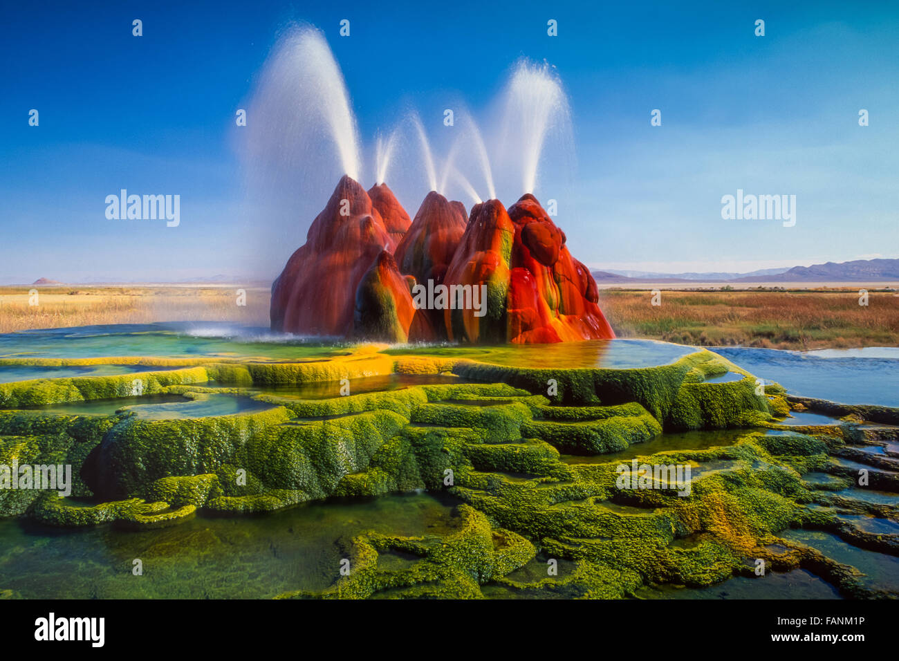 The continuous Fly Geyser of Fly Ranch is on private land in Nevada, USA Stock Photo