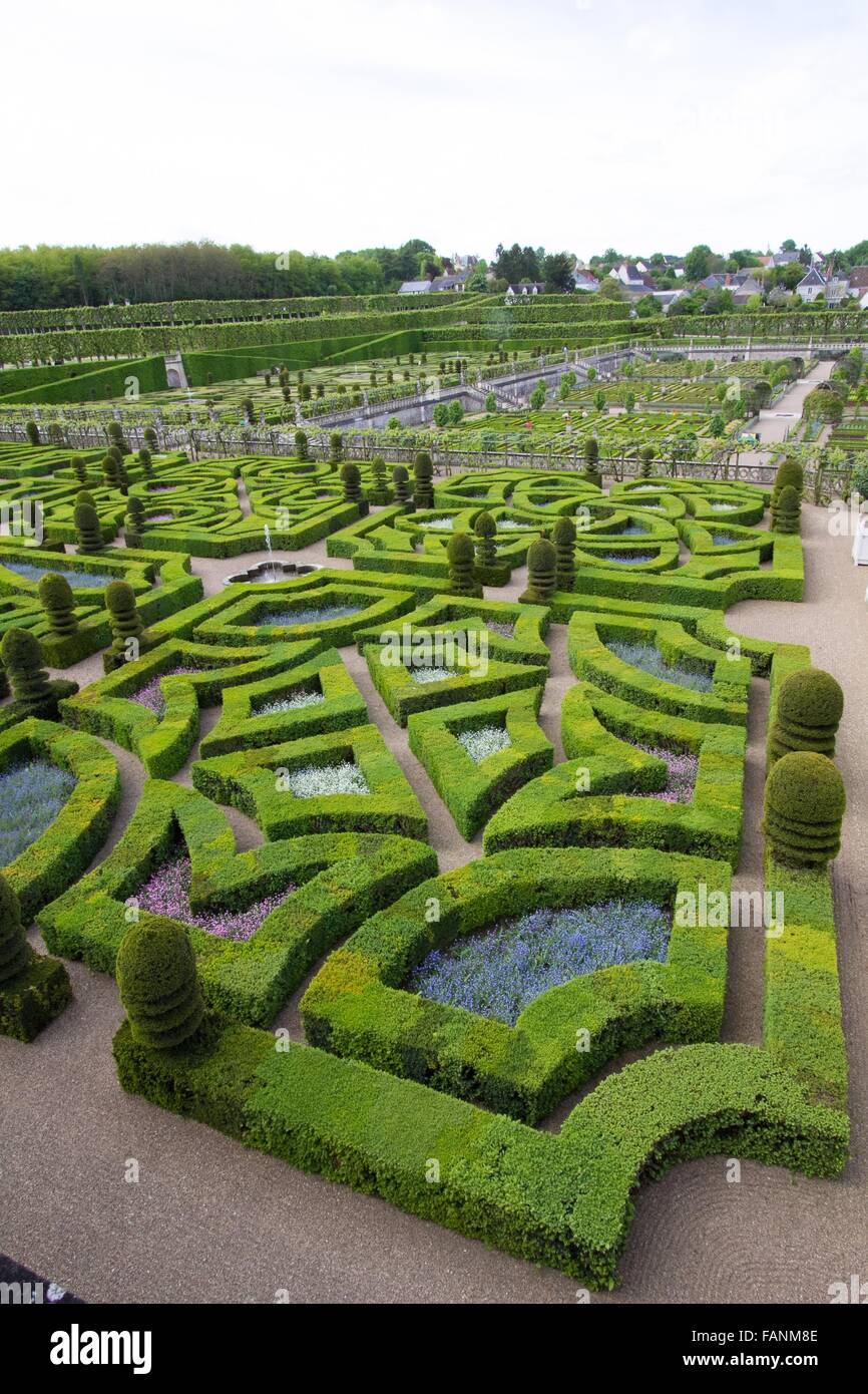 a view of a green labyrinth - Stock Image