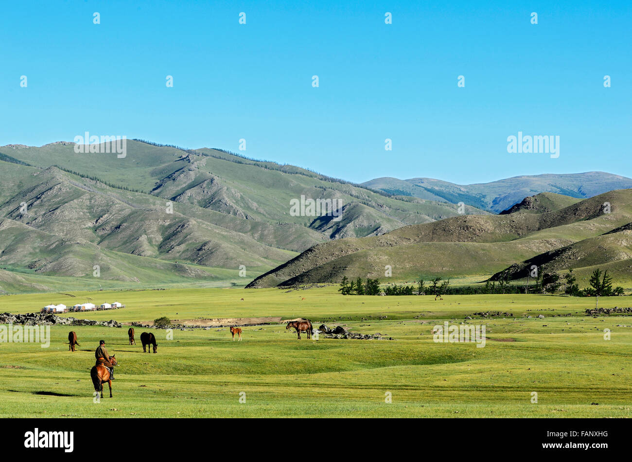 Nomads in the barren landscape in the Orkhon Valley, Khangai Nuruu National Park, Övörkhangai Aimag, Mongolia - Stock Image