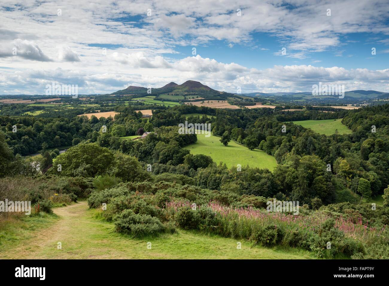 Lookout, Scott's View, St Boswells, Borders District, Scotland, United Kingdom - Stock Image