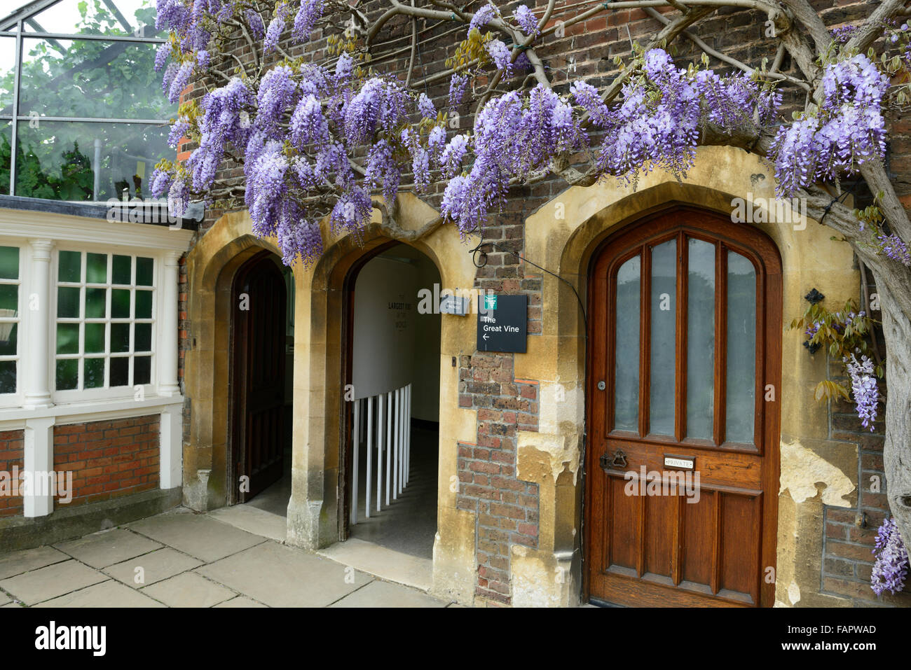 Hampton Court Herefordshire Stock Photos & Hampton Court ...