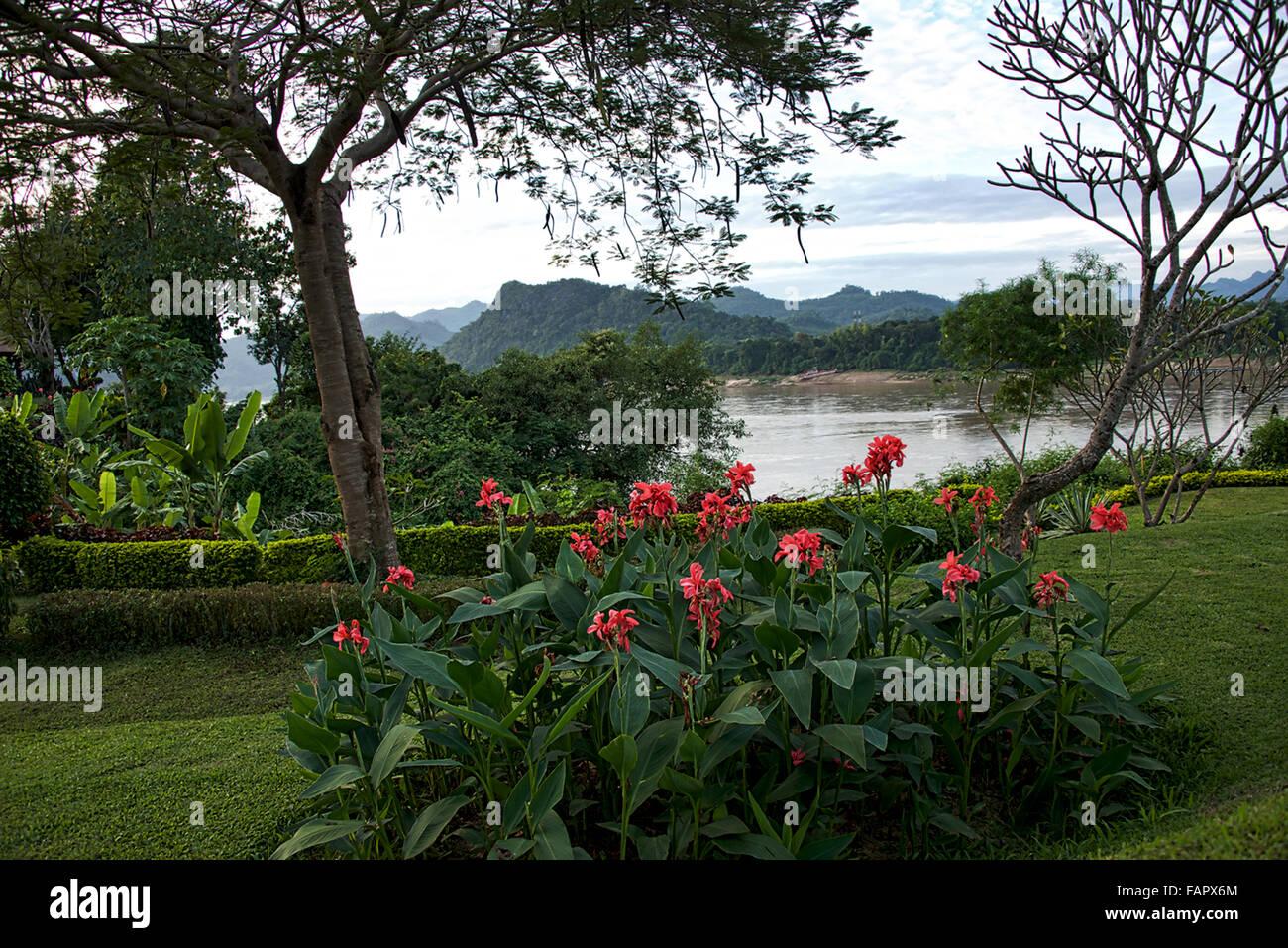 Mekong Dawn - Stock Image