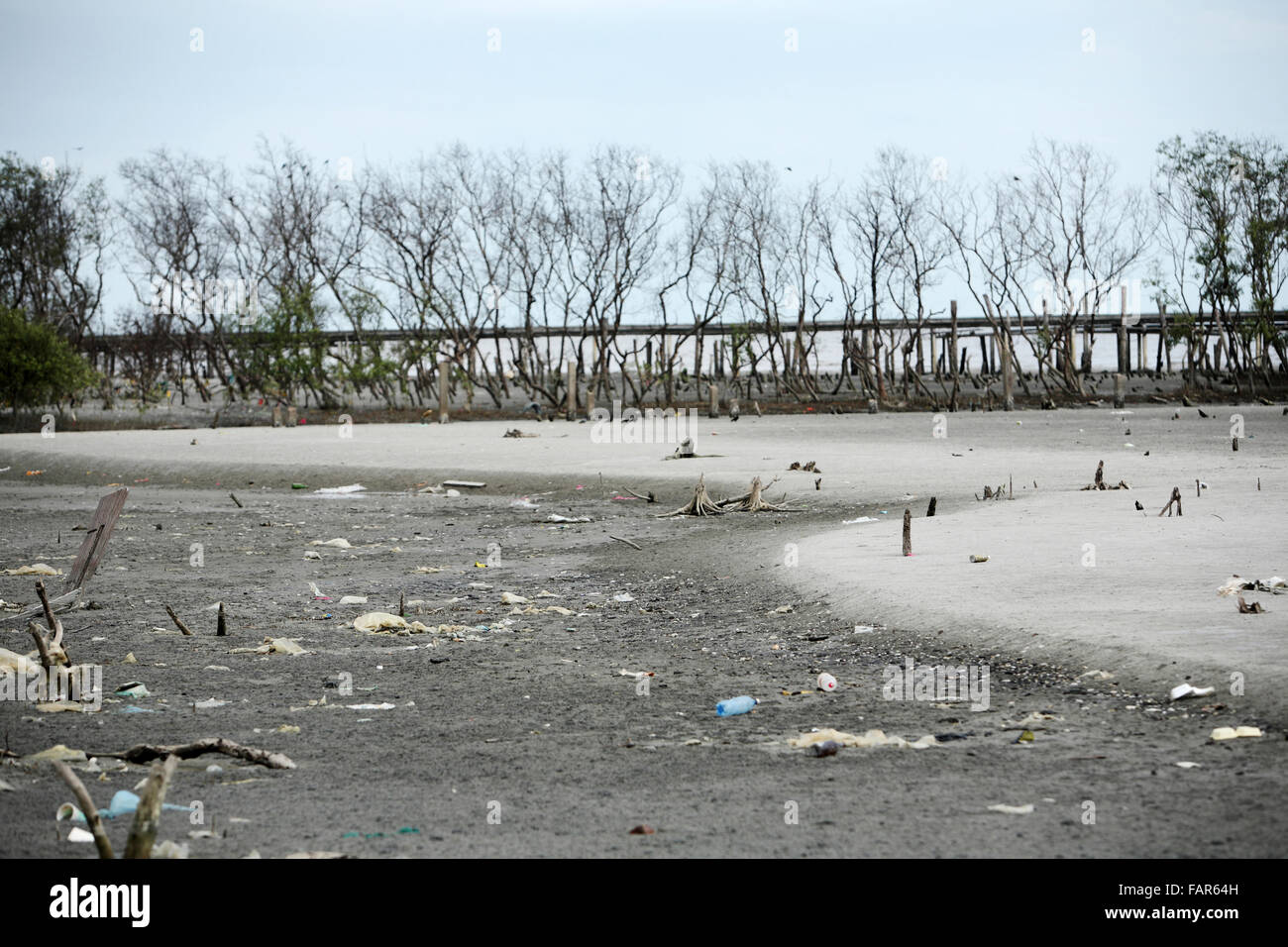 stock image of polluted beach - Stock Image