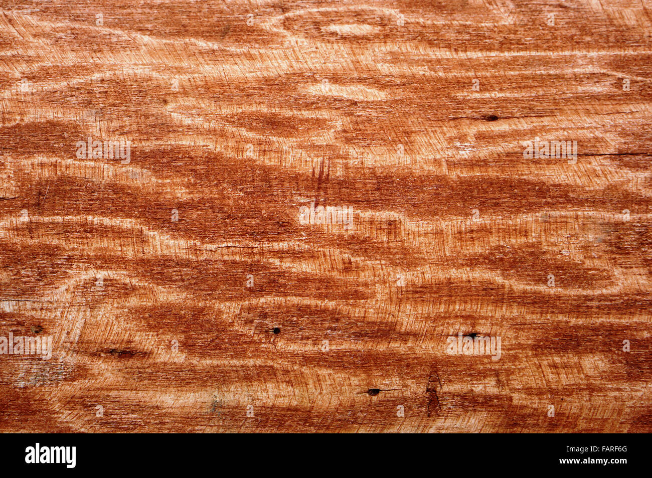 The wooden waves oak surface is painted with brown paint and peeled by a rough emery cloth - Stock Image
