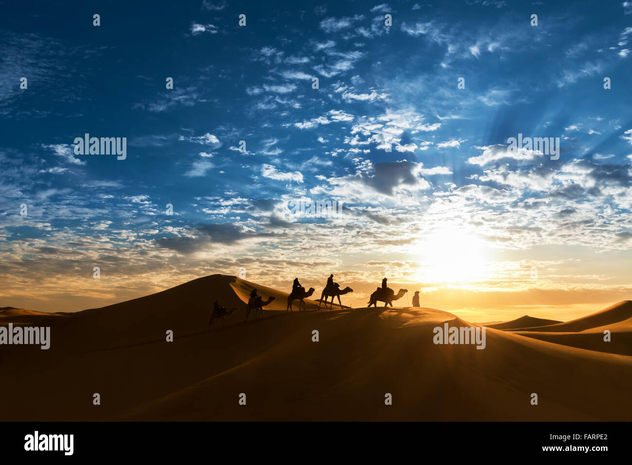 Caravan in the desert during sunrise against a beautiful cloudy sky. - Stock Image