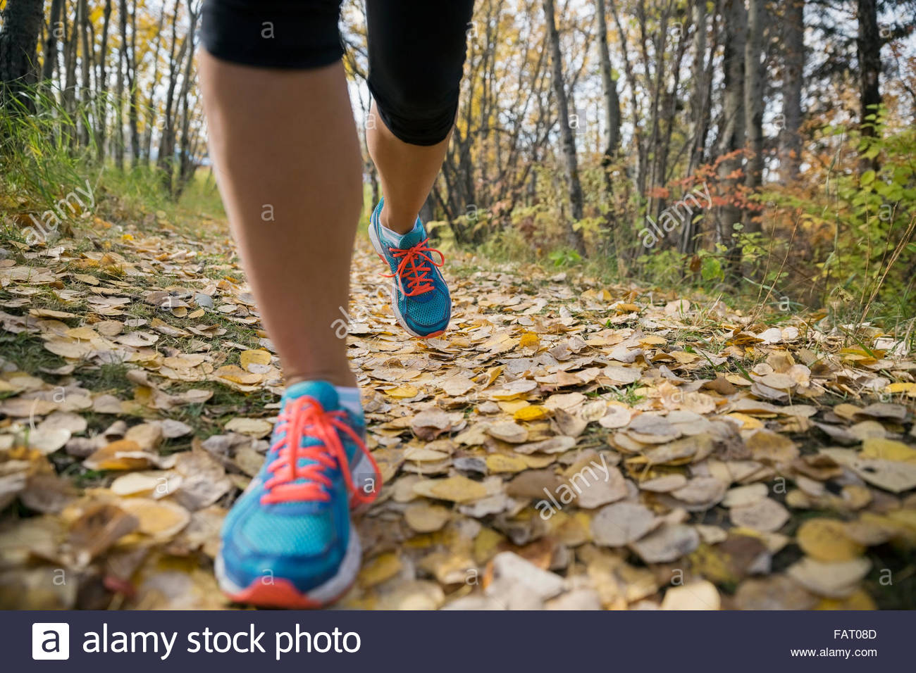 Close up woman's feet jogging on autumn path - Stock Image