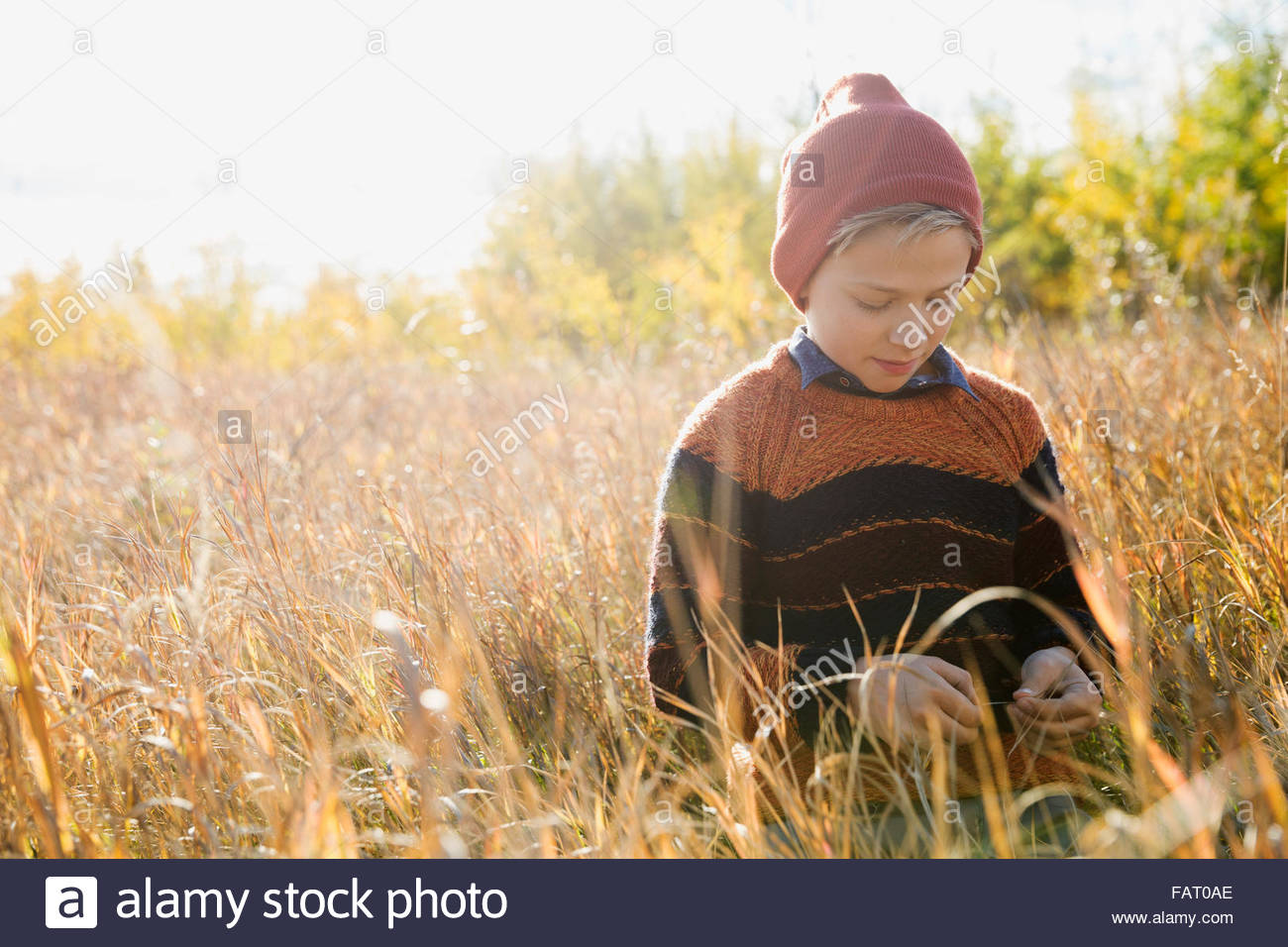Boy sitting in sunny golden grass - Stock Image