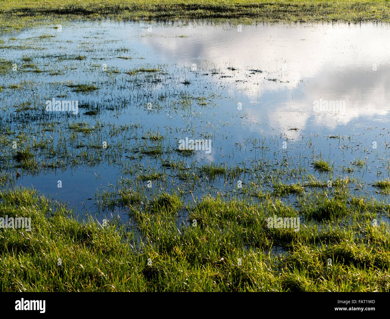 A small area of flooded field with sky and cloud reflected on the surface - Stock Image