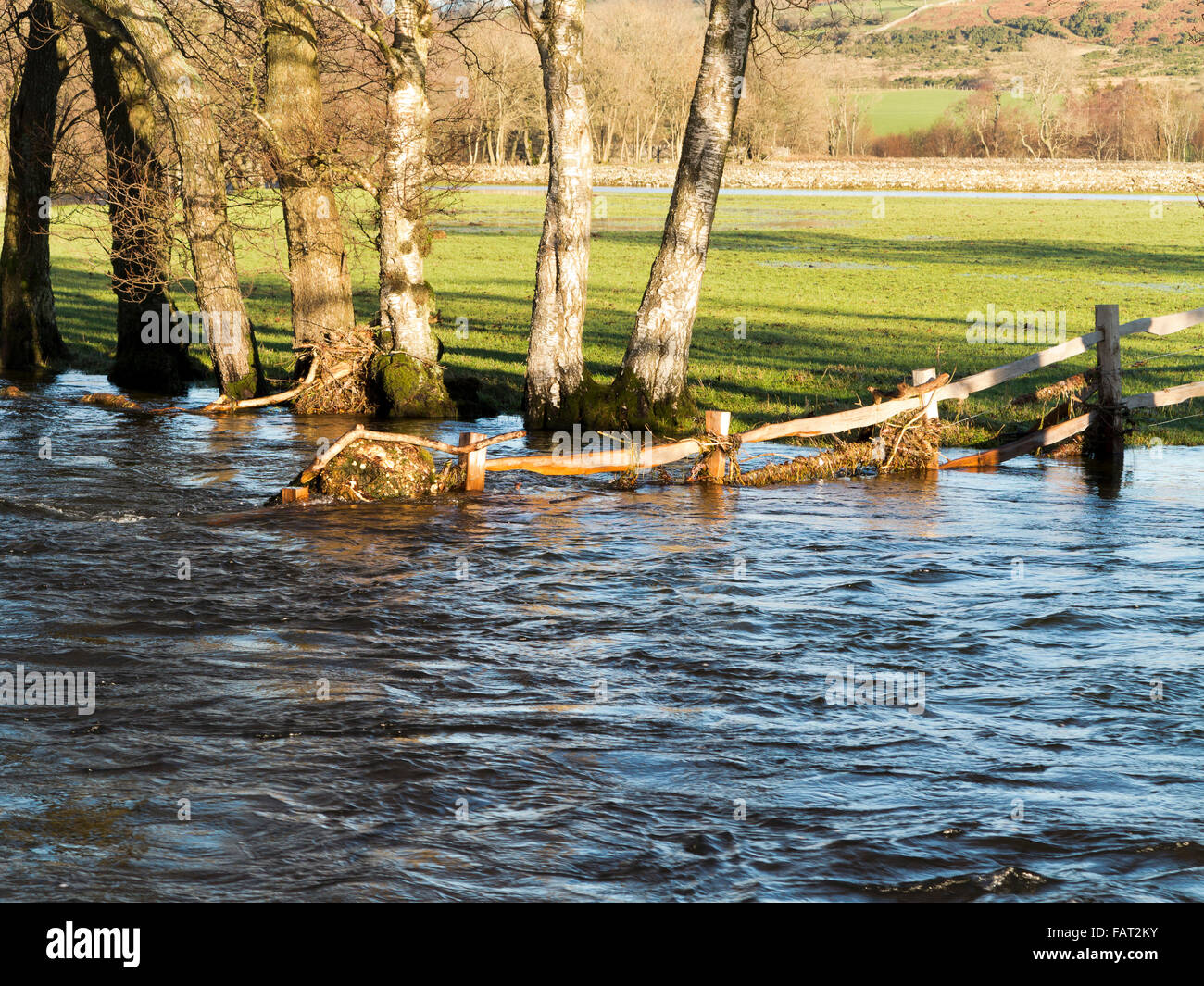 Partly submerged wooden fence containing flood debris and submerged trees on edge of field - Stock Image
