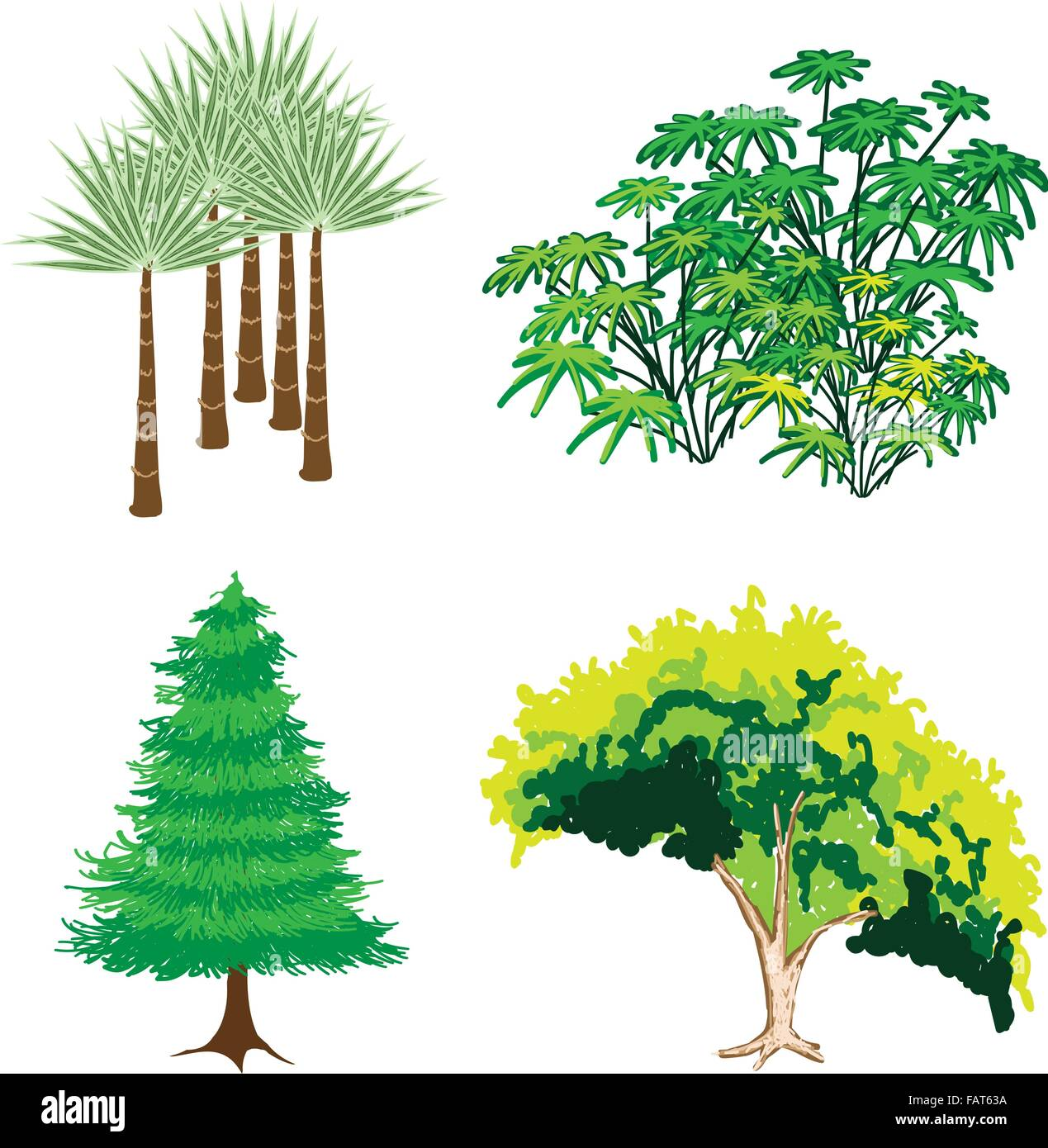 An Illustration Collection Of Landscaping Tree Symbols Or Isometric