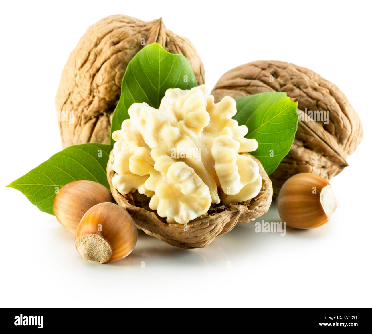 Walnuts Qand Hazelnuts Isolated On The White Background