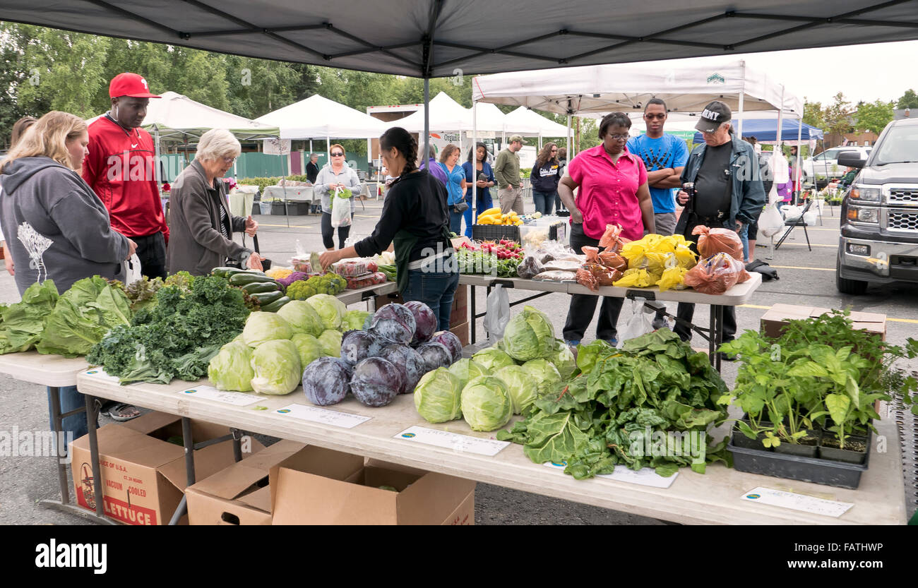 Anchorage Farmer's Market, shoppers inspecting vegetables. - Stock Image