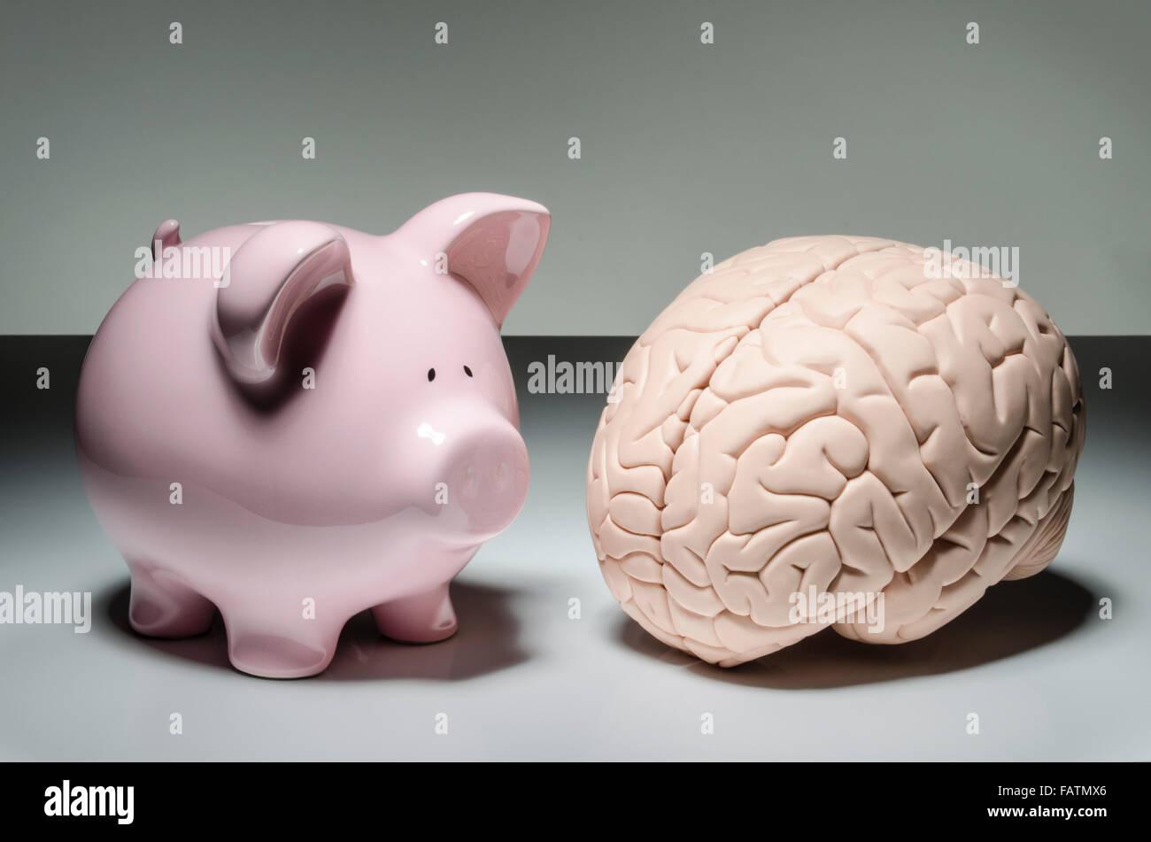 how is piggy intelligent