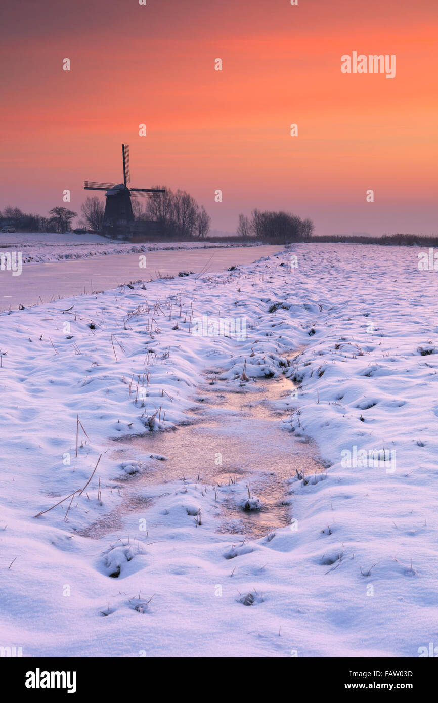 Typical Dutch polder landscape with a traditional windmill. Photographed in winter at sunrise. - Stock Image