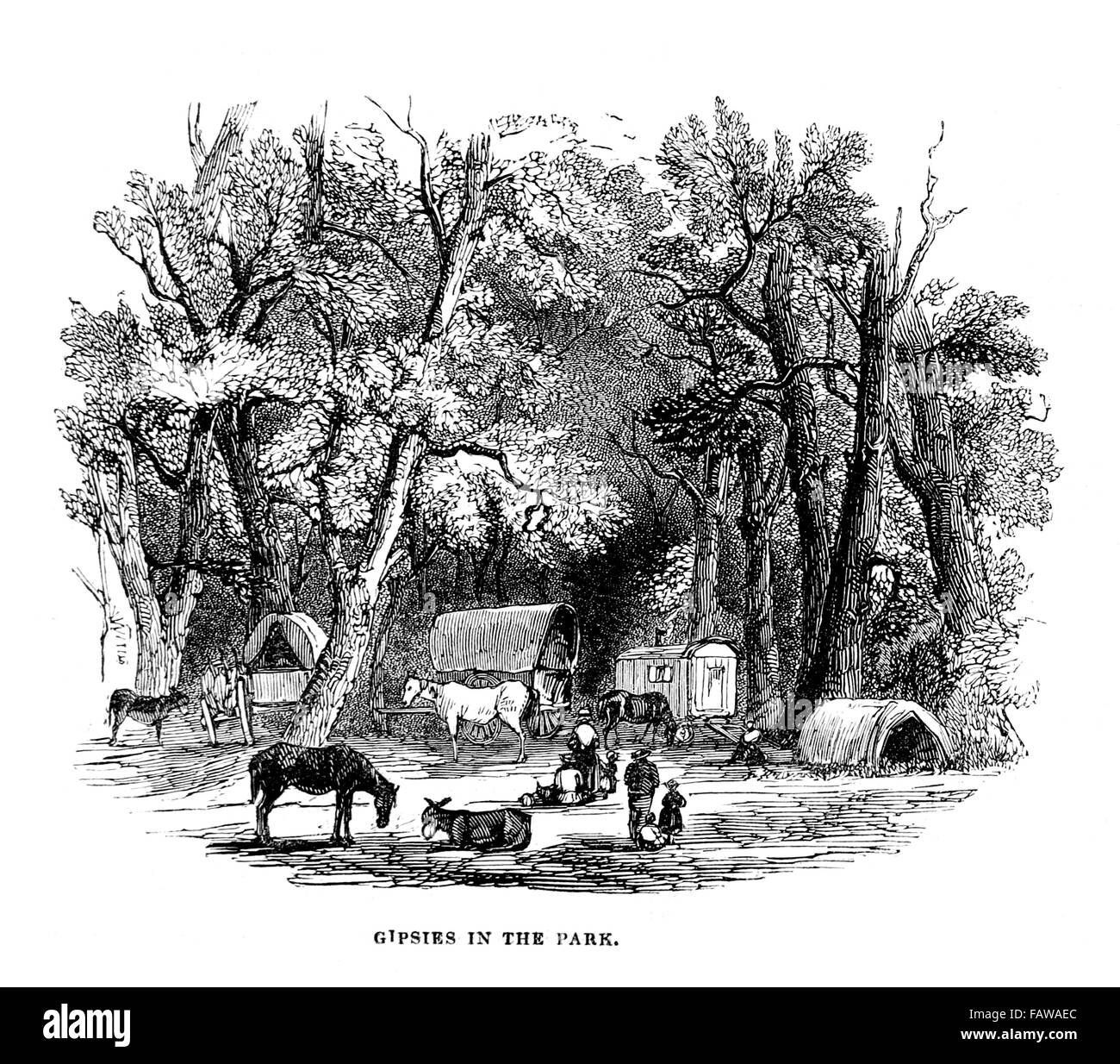 Gipsies Camped in the Park at Goodwood Races, 1844 Illustrated London News July 1844; Black and White Illustration; - Stock Image