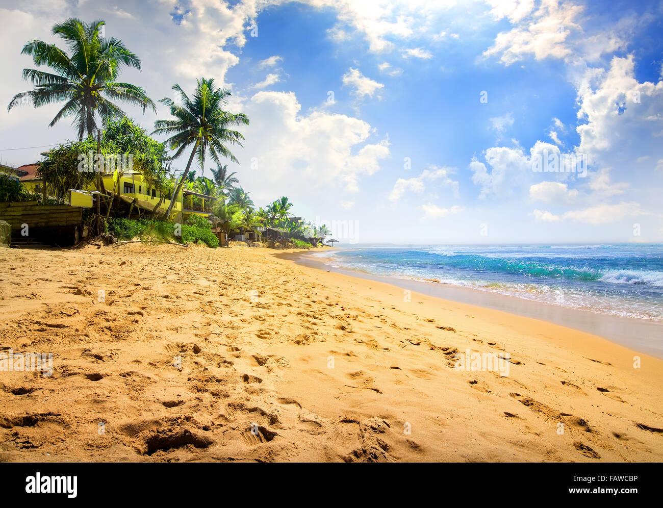 Sunlight over beautiful tropical beach near ocean - Stock Image