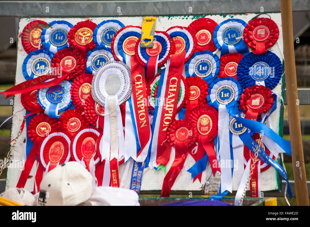 Rosettes at the Ellingham & Ringwood Agricultural Society Annual Show at Somerley Park, Ellingham, Ringwood, - Stock Image