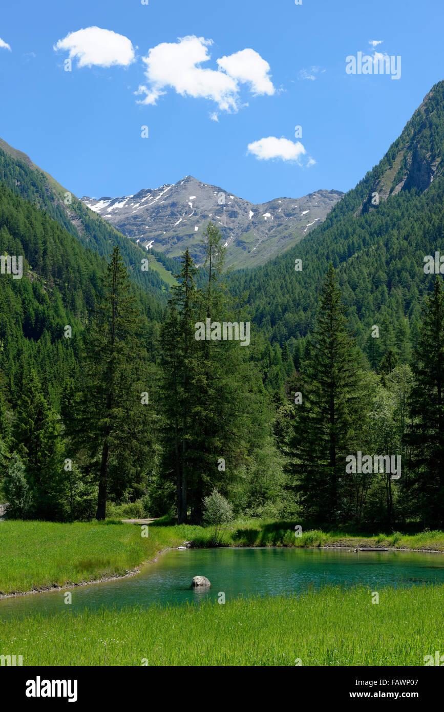 Spring water at Burgum, Wilde Kreuzspitze, Innerpfitschtal, Pfitschtal, Sterzing, Eisacktal, South Tyrol, Alto Adige, - Stock Image