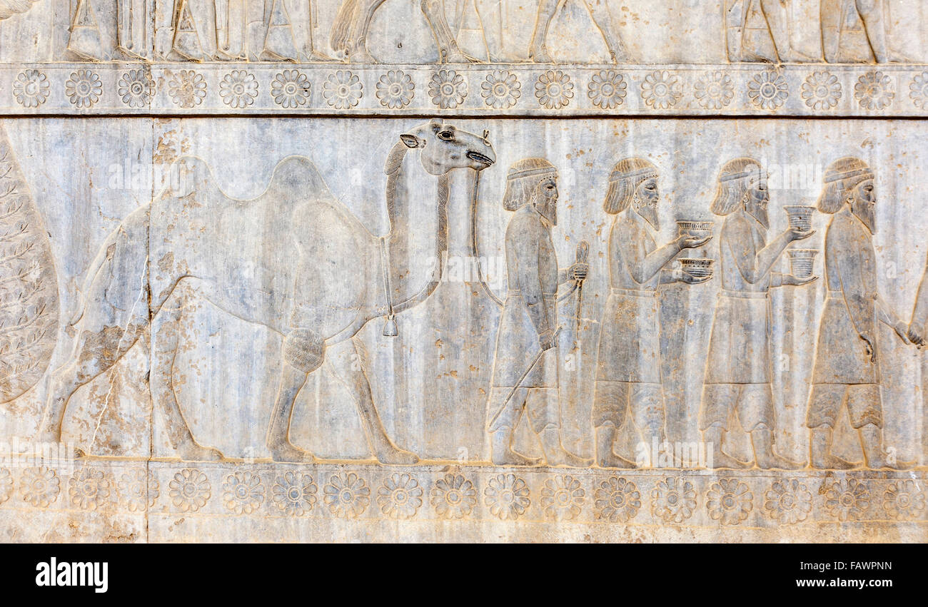 Ancient relief of the Achaemenids, delegation of the Parthians with camel, Apadana Palace, archaeological site - Stock Image