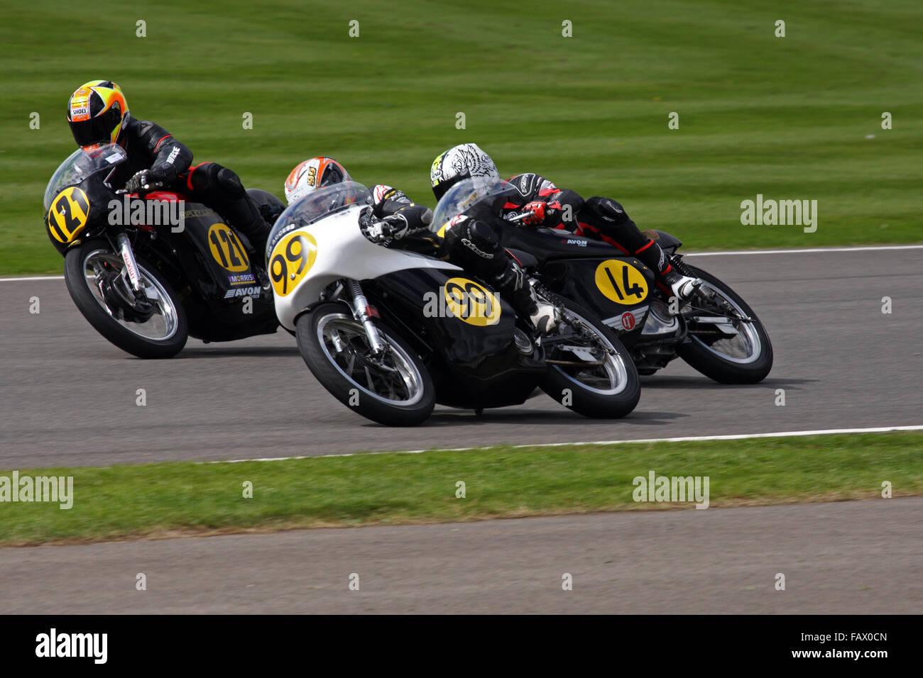 2 Norton Manx 500 & 1 Matchless G50 racing at Goodwood Revival 2015 - Stock Image
