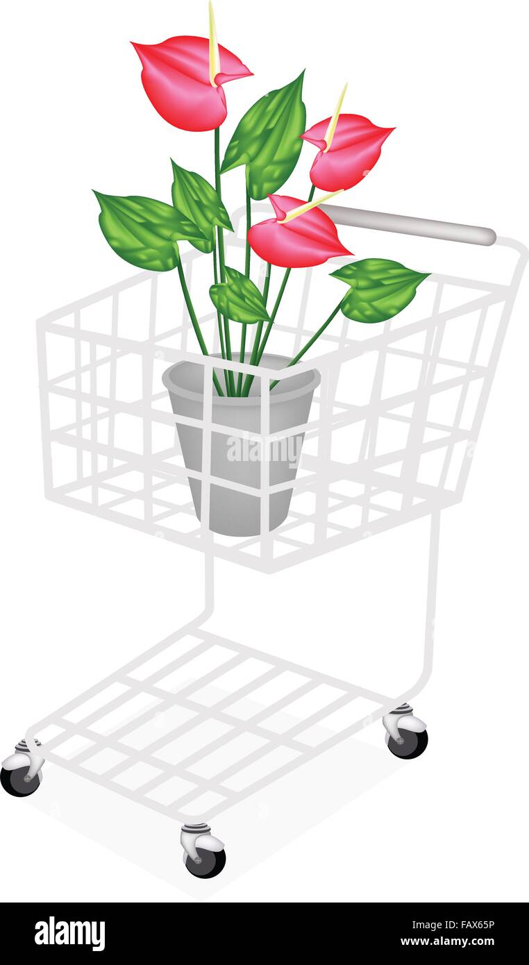 Beautiful Flower, A Shopping Cart Full with Heart Shaped Spathe of Blooming Red Anthurium Flowers or Flamingo Flower - Stock Vector