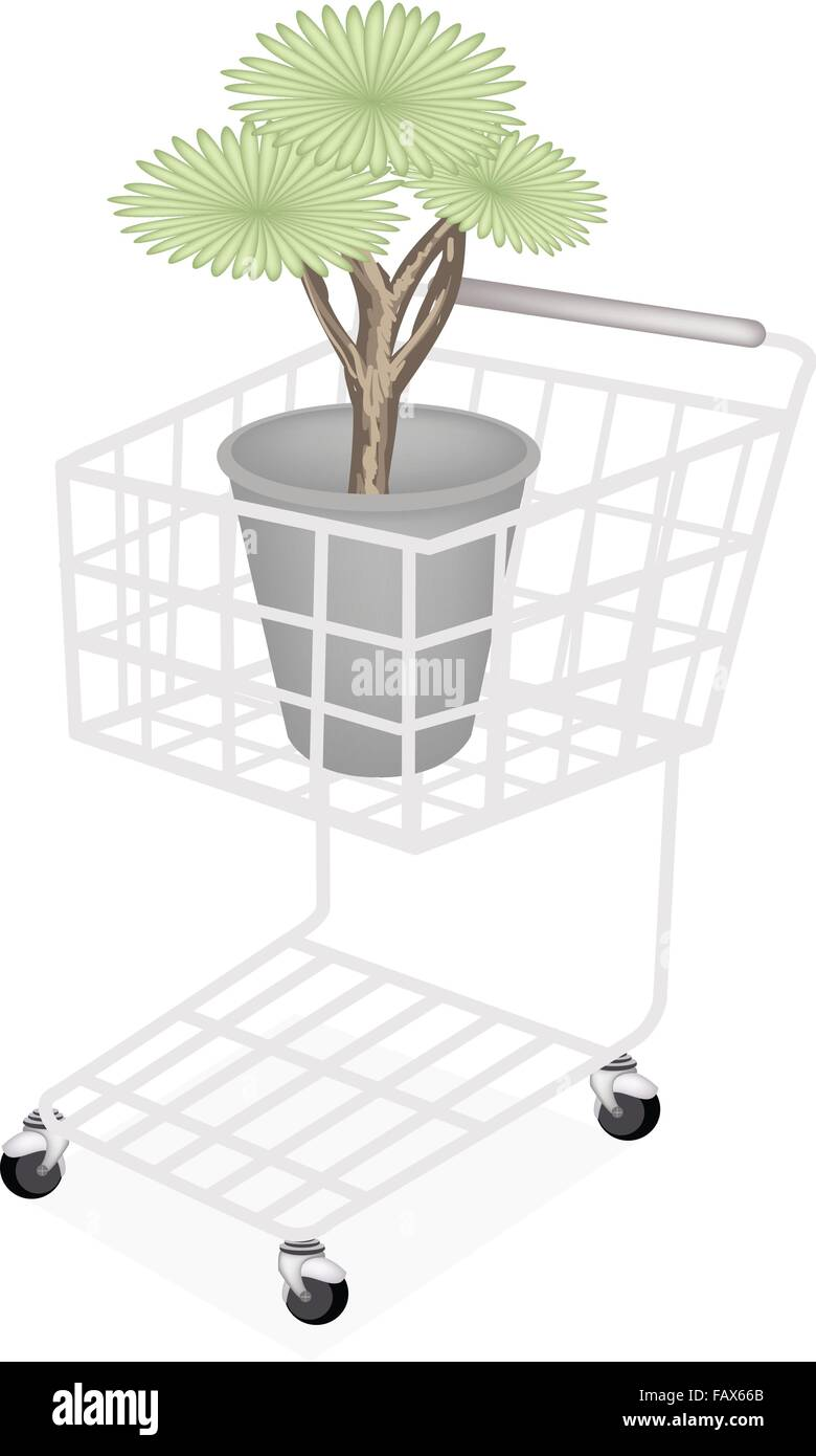 Ecological Concept, A Shopping Cart Full with Green Tree and Plant of Dragon Tree in Flowerpot for Garden Decoration. - Stock Vector